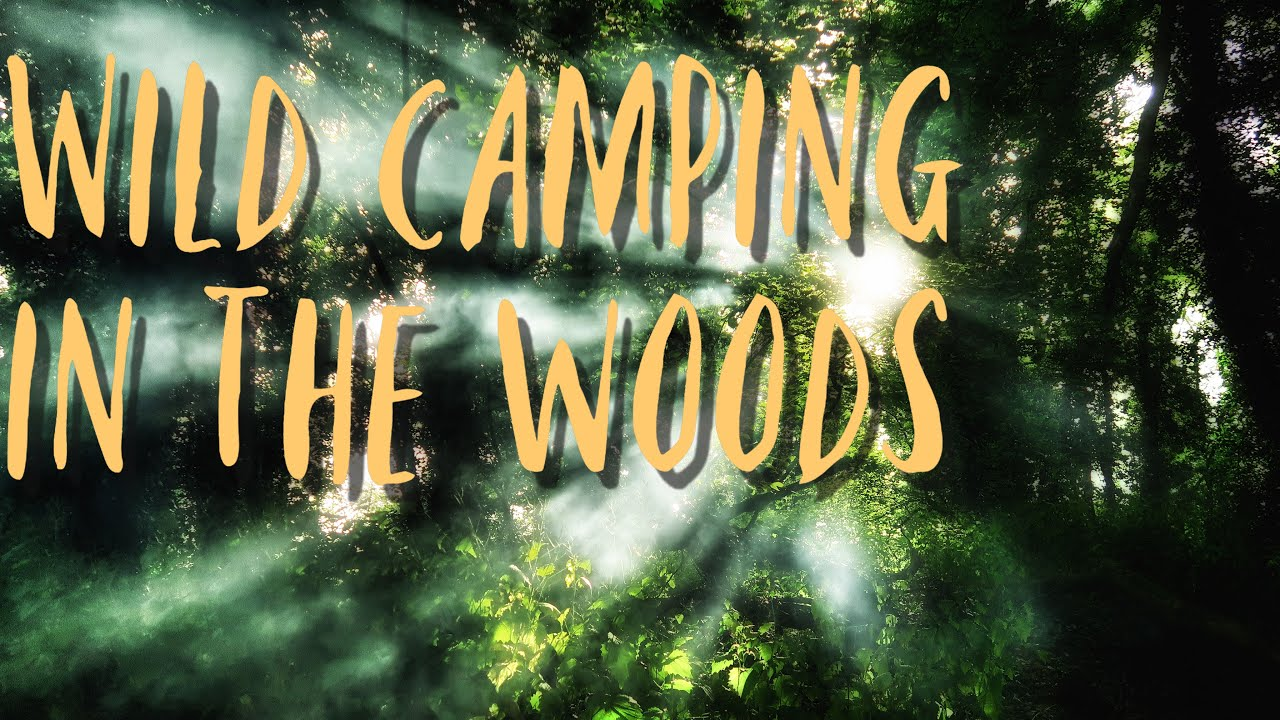 Wild camping in the woods UK - Tarp shelter - DD 3x3 ...
