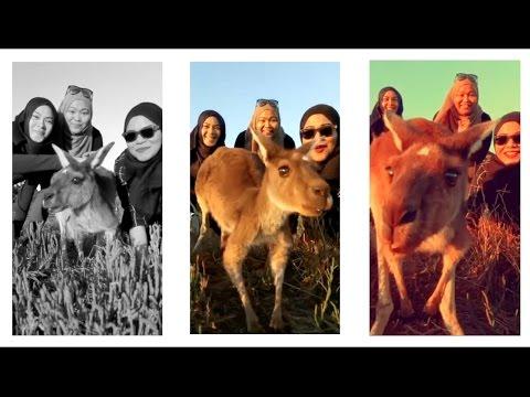 Light Camera Vlog Ep 6   Free Things To Do In Perth Heirisson Island