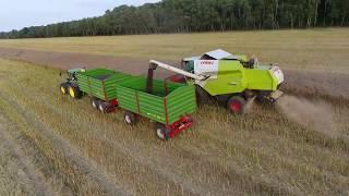 Żniwa 2017 (Harvester) John Deere, New Holland, Pronar