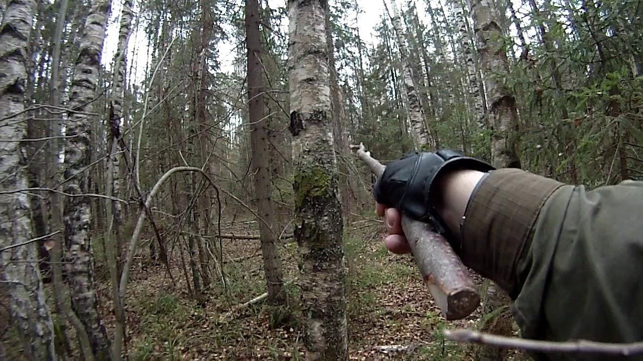 модель приняла как вычислить фотоловушку в лесу как то