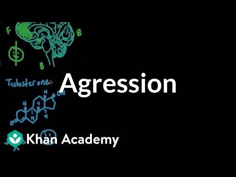 Aggression | Individuals and Society | MCAT | Khan Academy