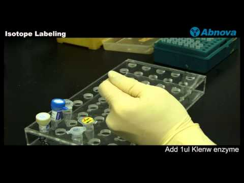 Isotope Labeling