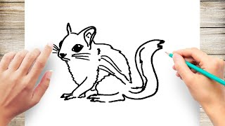 How to Draw Chipmunk Step by Step for Kids Easy