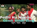 Pedhi Ha Nimme || Adiwasi Gondi Video Song HD || Pandurang Meshram Presents