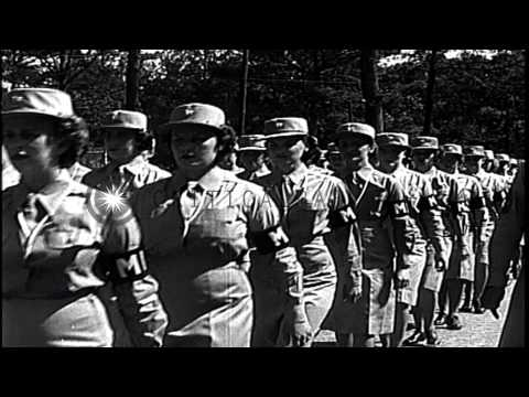 U.S. Women's Army Corps personnel training in different fields and given career a...HD Stock Footage