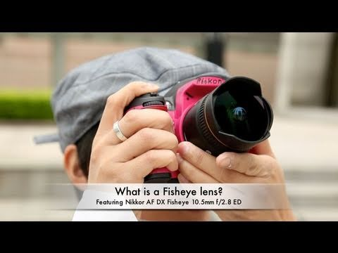 What is a Fisheye lens? (feat. Nikkor AF DX Fisheye 10.5mm f/2.8 ED)