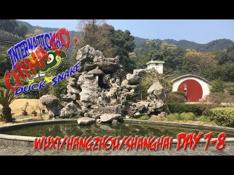 International Duck-Snake | China Ed. |  Wuxi/Hangzhou/Shanghai (Day 7-8)