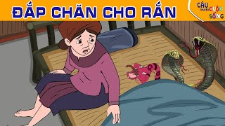 ĐẮP CHĂN CHO RẮN - Truyện cổ tích - Phim hoạt hình - Tổng hợp phim hoạt hình hay nhất