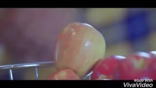 Shiftaan  sippy gill new song full video