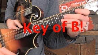 B Major Mandolin Scale Study!