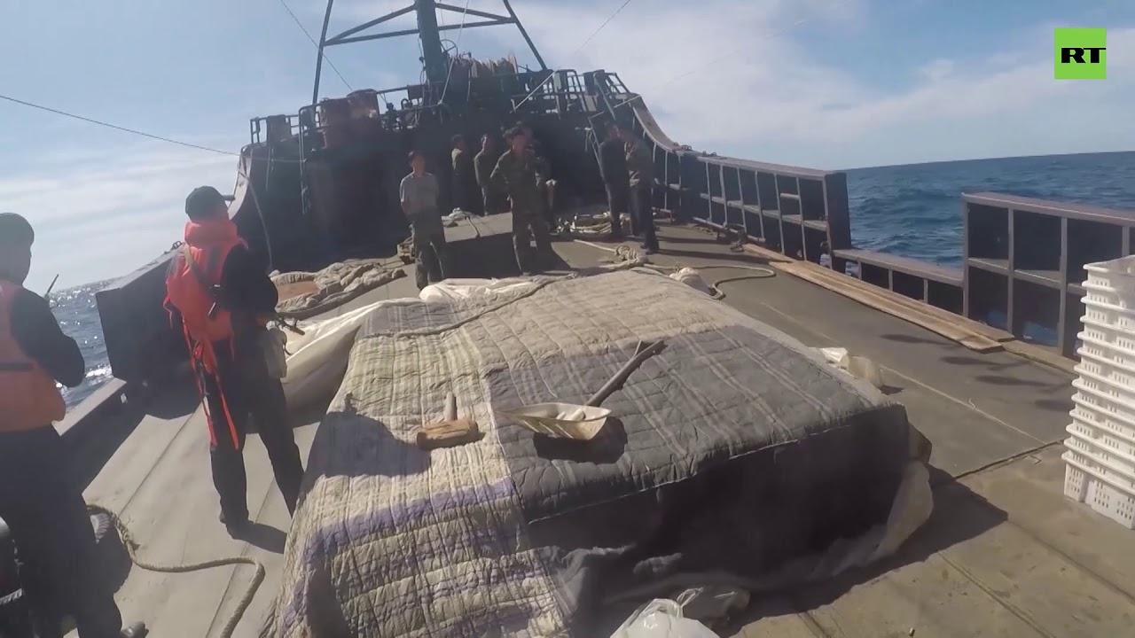 В Японском море ФСБ задержала более 160 браконьеров из КНДР