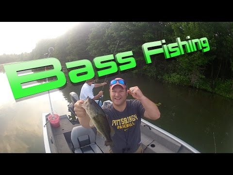 Bass Fishing (Lake Arthur)