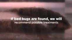 Troy, MI Exterminator for Bed Bugs - Hi-Tech Pest Control