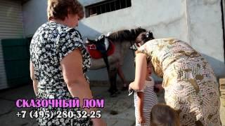 Лунтик, дрессированные животные на праздник (495) 280-32-25