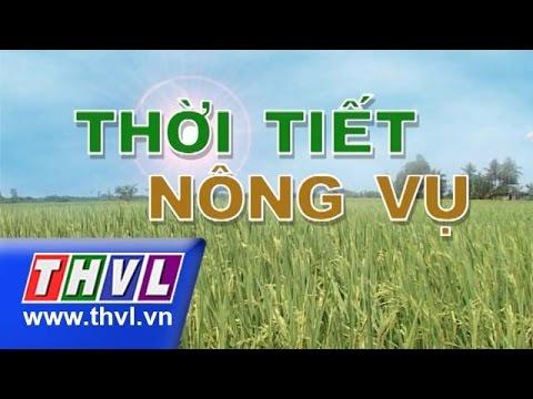THVL | Thời tiết nông vụ (23/04/2015)