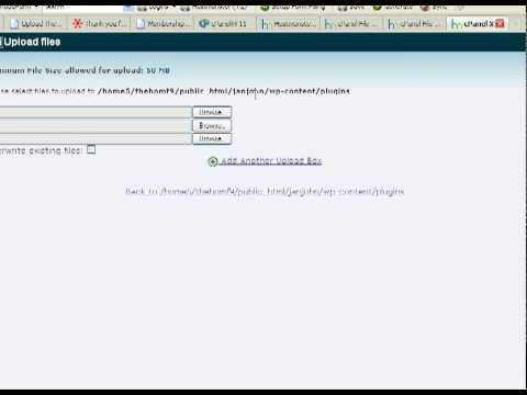 Protect Your Blog With A Blank Index.html File