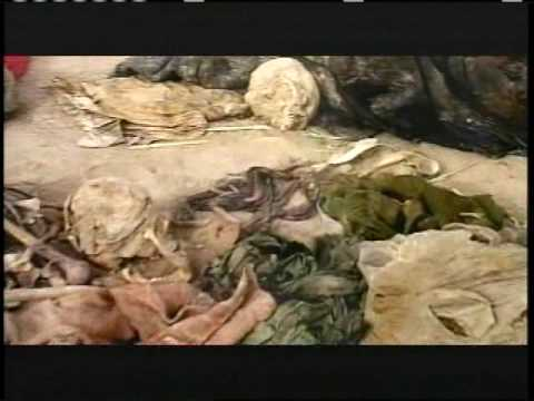 º× Free Watch WMD: The Murderous Reign of Saddam Hussein