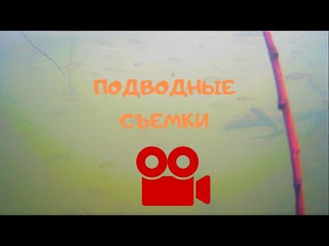 Подводные съемки Елатомского затона, Рязанская область.
