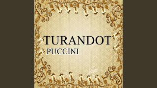 "Turandot, Act III: ""Tu che di gel sei cinta"""