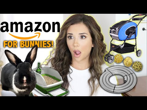 Things You Can Buy For Rabbits on AMAZON! (Christmas Shop with Us!)