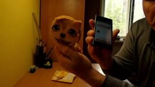 Мини кошелек детский 3D кошки, собаки