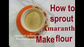 How to Make Amaranth Sprouts, Sprouted Amaranth Flour