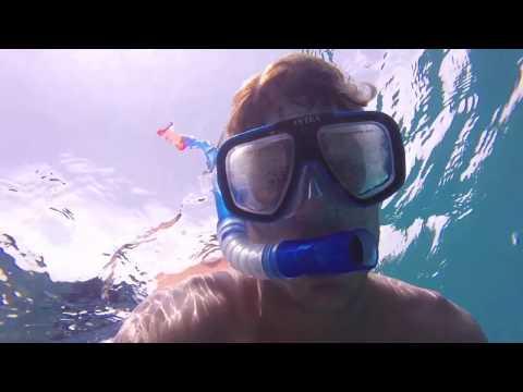 Snorkeling in Carlisle Bay, Barbados