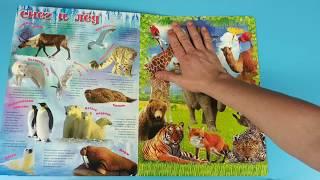 Пазлы животные, слон, лев, жираф, верблюд, лисица, леопард, попугай, медведь, енот!