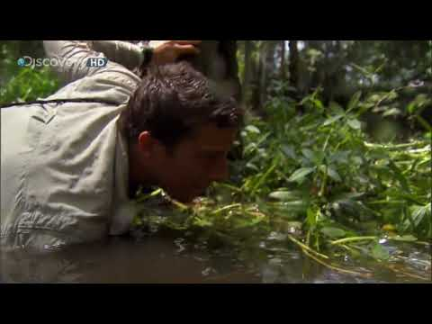Bear Grylls fishing a Catfish