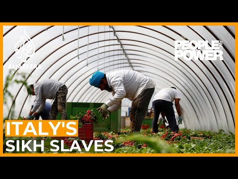 Italy's Sikh Slaves | People And Power