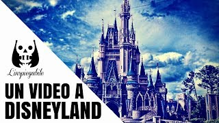 Un inquietante video a Disneyland (caso reale)