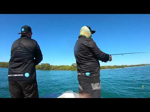 Mud Island Fishing Moreton Bay