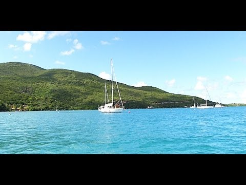 Where to Eat in the British Virgin Islands | Potluck Video