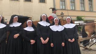 """Wittenberg: 25. Stadtfest """"Luthers Hochzeit"""" ist eröffnet"""