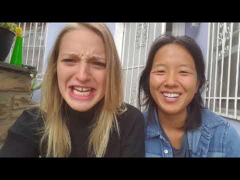 4 DAYS LEFT! Chicago Elderberries Indiegogo Update
