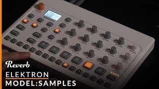 Elektron Model:Samples First Listen | Reverb Demo