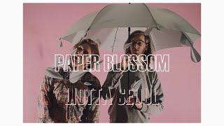 Liotta Seoul - Paper Blossom