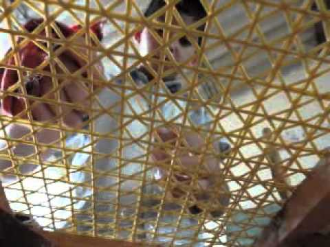 Escultura en madera escuela de arte y taller abierto de - Como tapizar un sillon ...