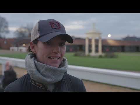 Tattersalls Craven Breeze Up Sale Day 1 Video Review