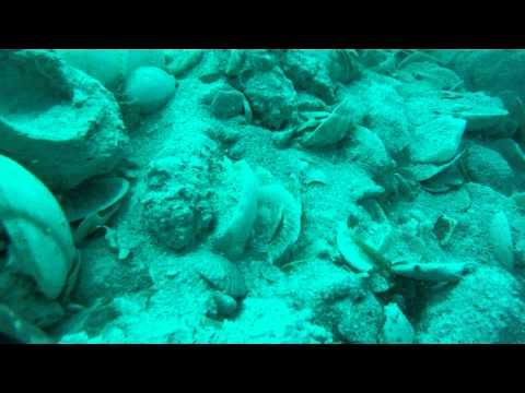 Diving The Atocha In Search Of Treasure
