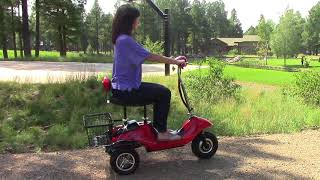 EWheels EW-19 Sporty Scooter