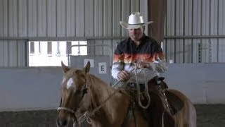 How to teach a horse to jog and canter under saddle; Rick Gore Horsemanship; www.thinklikeahorse.org