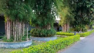 Resort in Chiang Rai