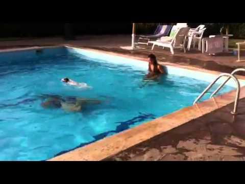 Pepito il cane che si tuffa in piscina youtube for Pepito piscinas online
