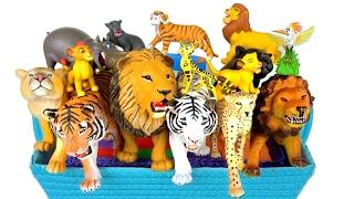 Смотреть видео что они делает тигр
