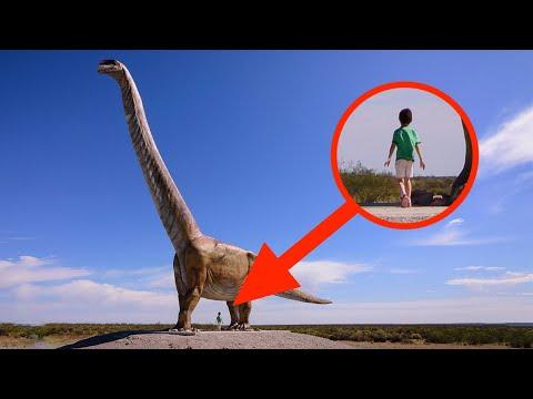 Die Überraschendsten neuesten Entdeckungen über Dinosaurier!