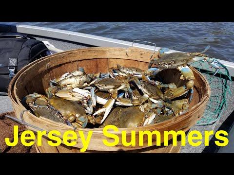 Summer New Jersey Blue Crabs