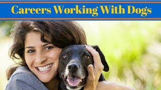Careers Working With Dogs - Dog Trainer Job
