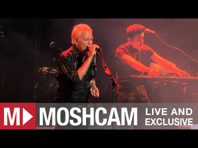 icehouse-hey-little-girl-live-in-sydney-moshcam-moshcam