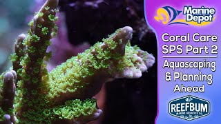 Aquascaping and Planning Ahead: How to Keep SPS Coral Part 2, Coral Care with Reefbum